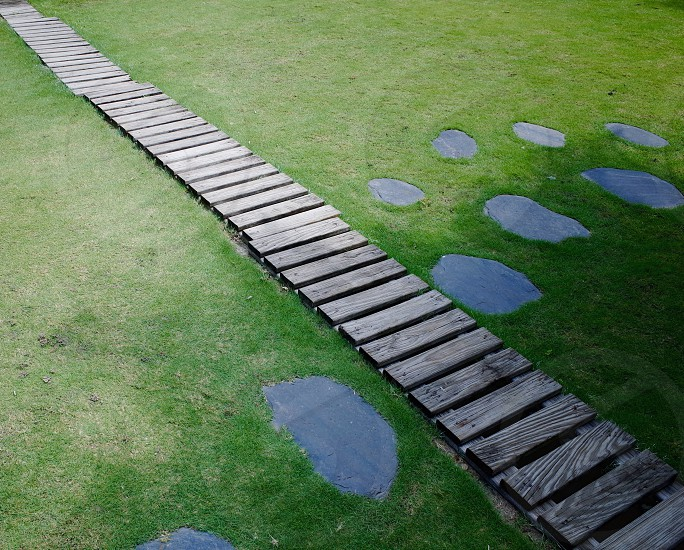 gray wooden walkway in between green grass photo