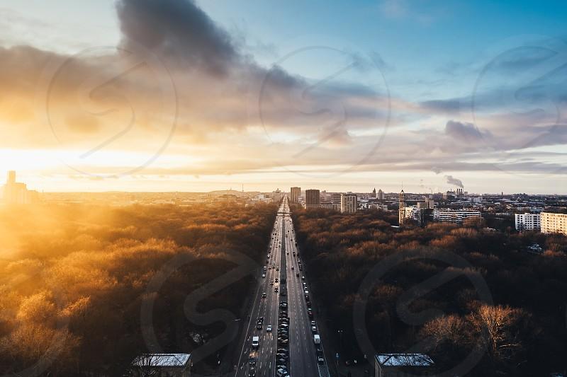 Berlin Haze photo