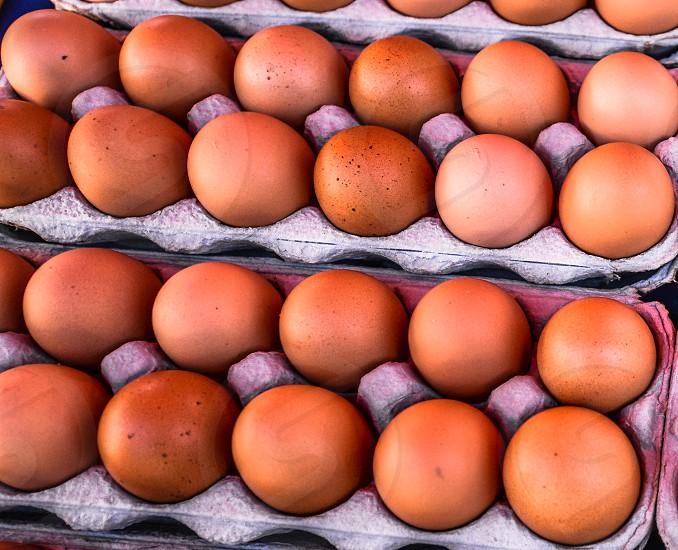 Farmers Market Eggs photo