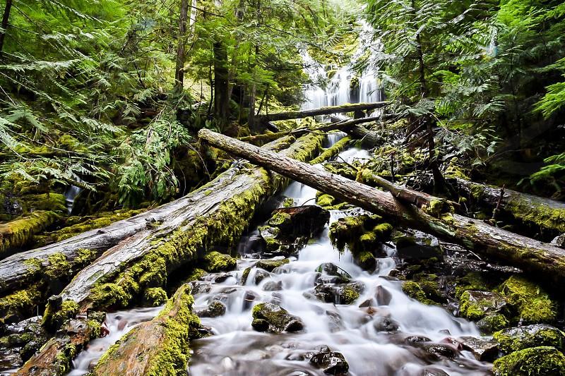 Oregon water waterfalls photo