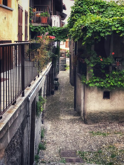 Old houses with ivy-covered balconies on a narrow street in an Italian town.  photo