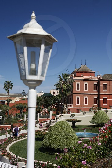 The Victoria Garten in the Town of La Orotava on the Island of Tenerife on the Islands of Canary Islands of Spain in the Atlantic.   photo
