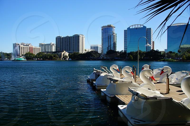 Orlando FL photo