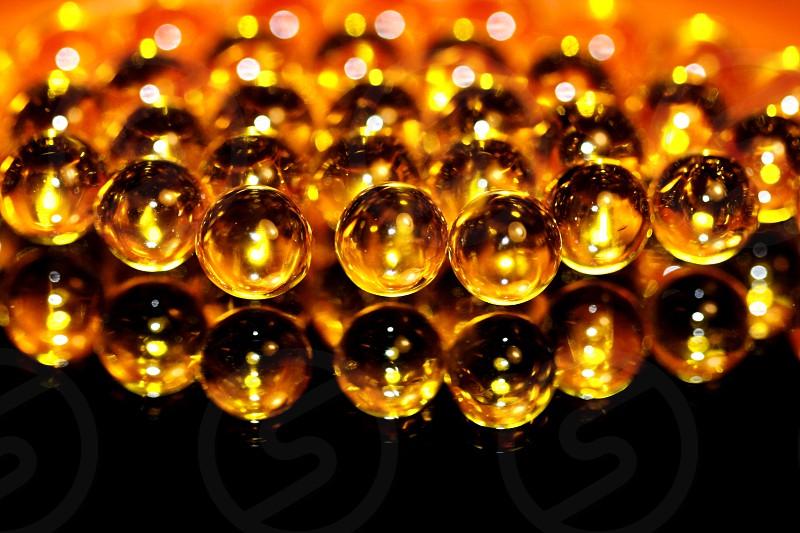 cod liver oil photo