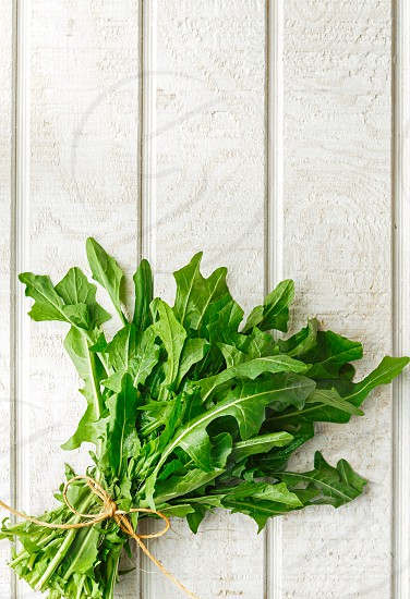 Single bunch of fresh organic dandelion greens on a white wooden surface with copy space photo