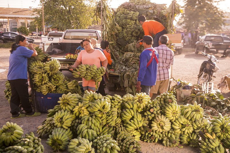 Banana sale at the Food Market in the Town of Phimai in the Provinz Nakhon Ratchasima in Isan in Thailand.  Thailand Phimai November 2017 photo