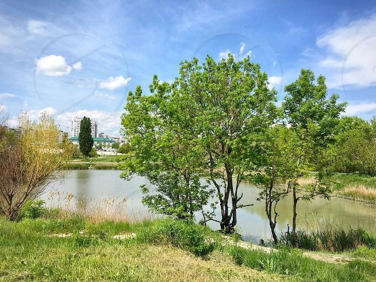 City summer lake nature photo