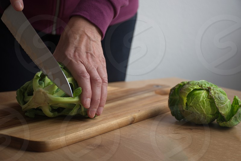 Midsection of the woman cutting cabbage photo