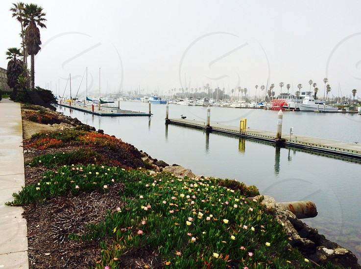 Foggy day at Channel Islands Harbor CA photo