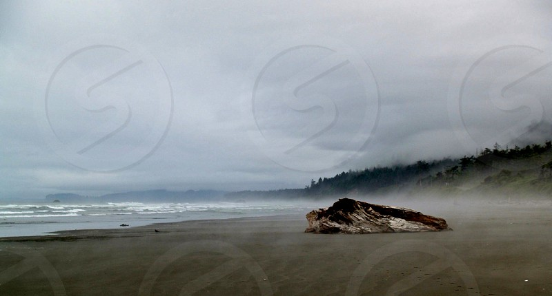 Washington coastline landscape fog beach adventure explore ocean water waves photo