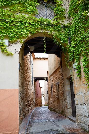Zamora Calle Troncoso street arch in Spain photo