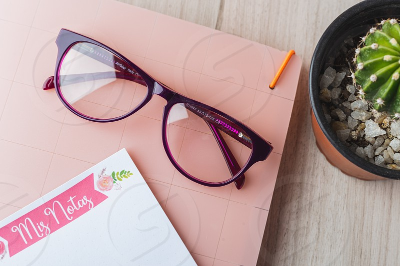 Woman glasses with planner and plant photo