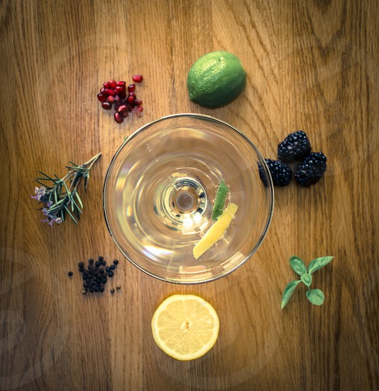 Martin cocktail gin botanicals photo