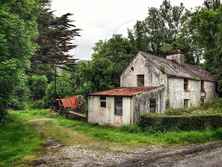 Abandoned old house cottage shed building rural woods  photo