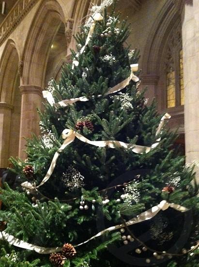 Christmas at the Washington National Cathedral photo