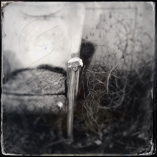 Tintype of stately chair left outside to rot  photo