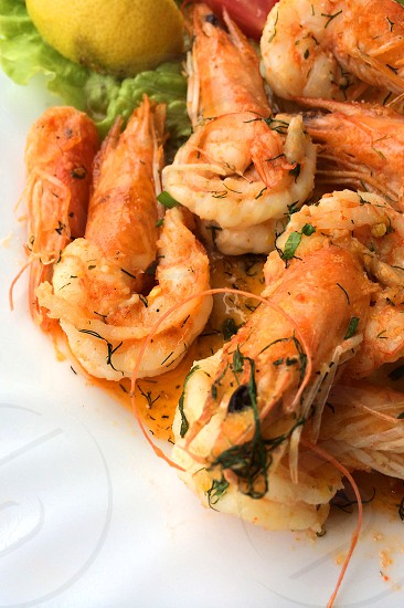 shrimp dish with sauce on white plate photo