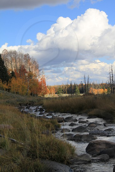 Autumn stream photo