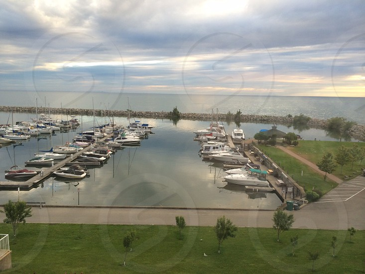 aerial photography of docked boats photo