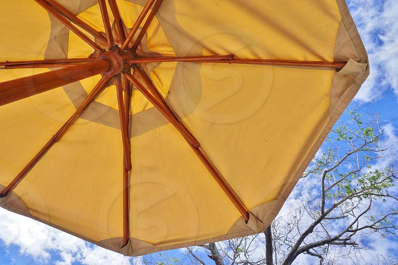 umbrella sun sky summer yellow wood photo