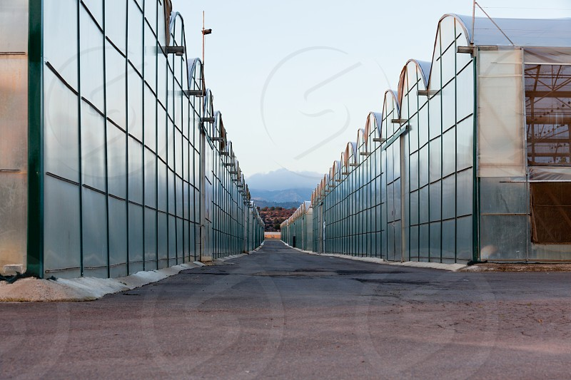 Large scale commercial greenhouses for agricultural veggie production in two endless rows reaching horizon photo