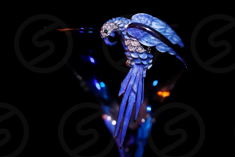 Blue Parrot on a martini glass with reflecting highlights (Blue Parrot Lounge) photo