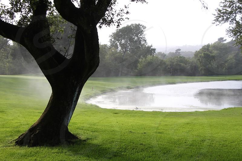 Misty pond photo