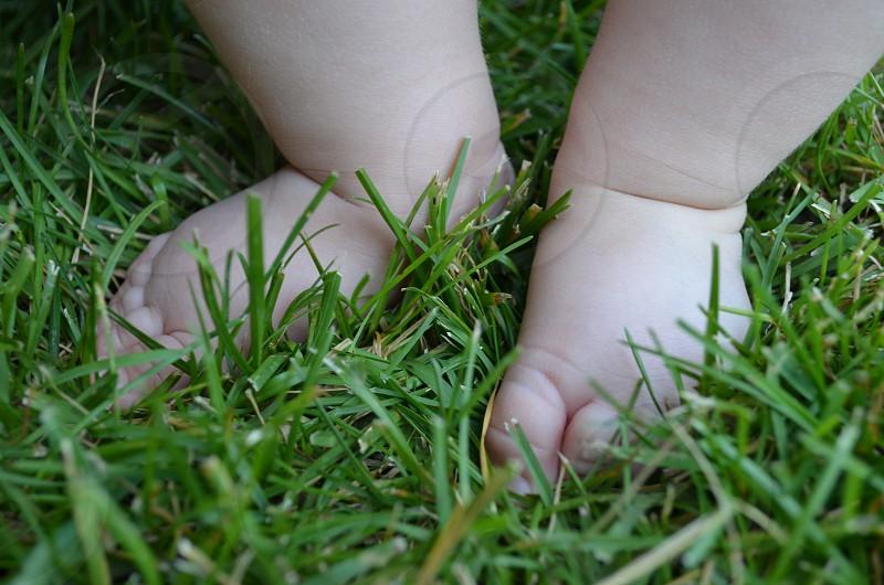 Babies feet in green grass photo