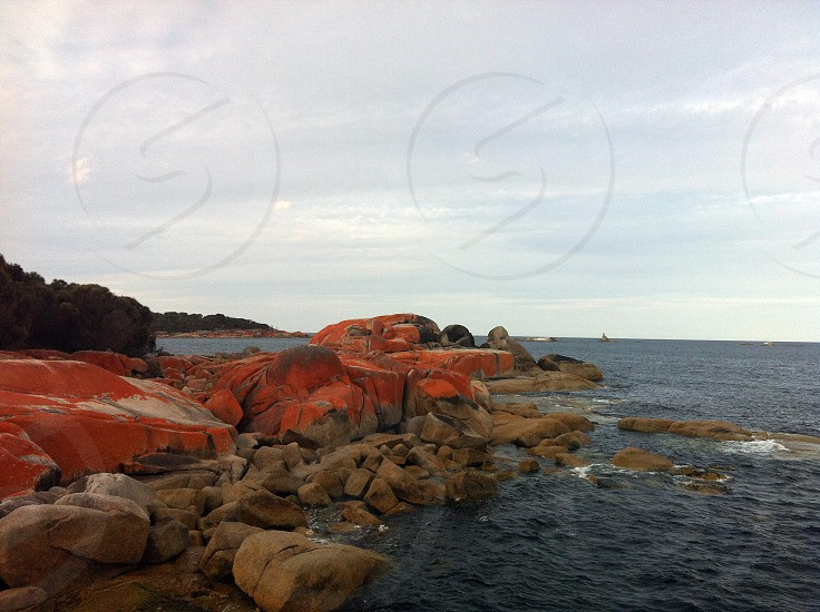 brown rocky shore by blue body of water under white sky photo