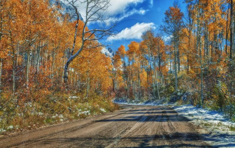 Kebler Pass Colorado photo