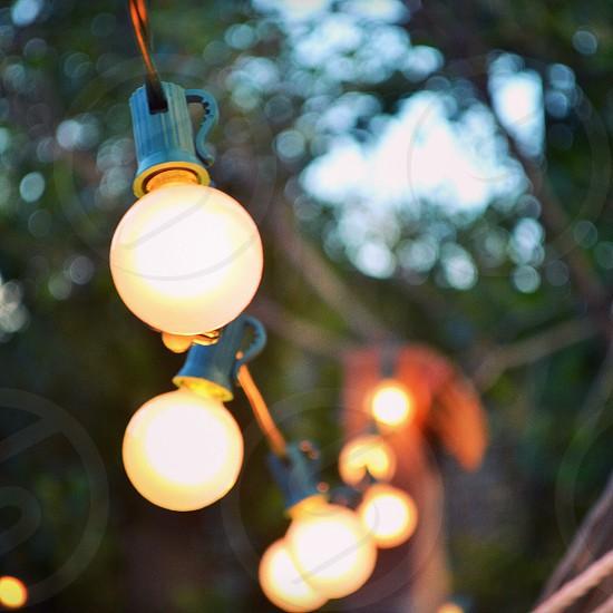 orange incandescent bulb photo
