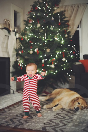 Baby's first steps in front of a Christmas tree.  photo
