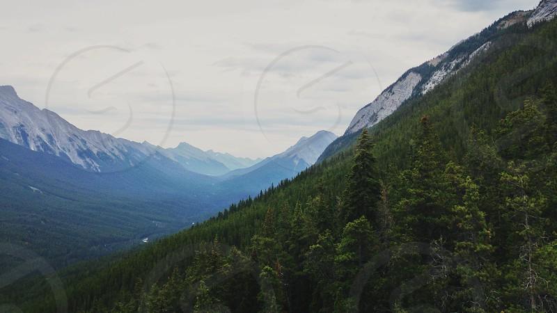 mountain view near green trees photo