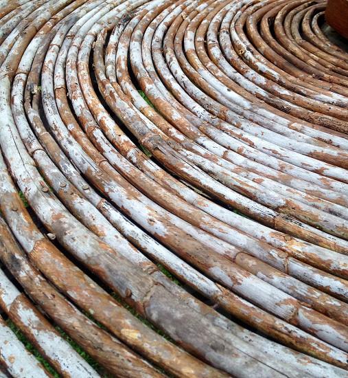 Wood circles branches photo
