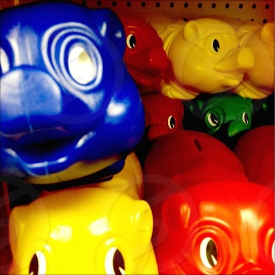 pigs color plastic diversity toys eyes photo