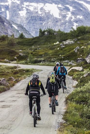 A group mountain biking in Norwegian mountains photo
