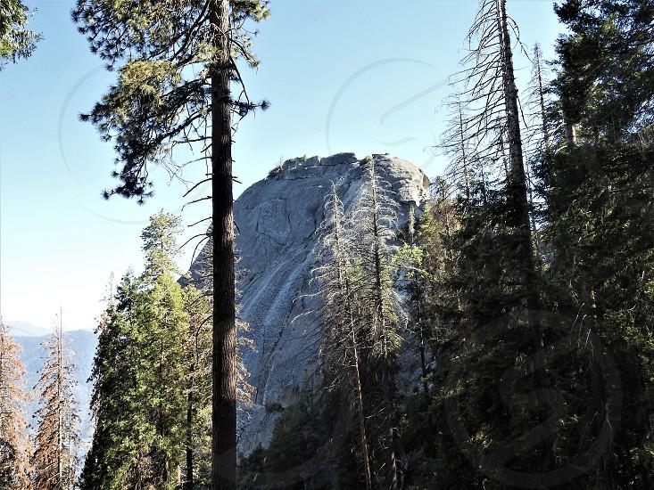 Kings Canyon photo