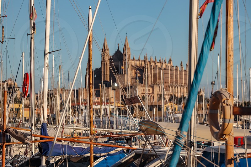 View of the Cathedral of Palma De Mallorca from harbor during day - clear sky photo