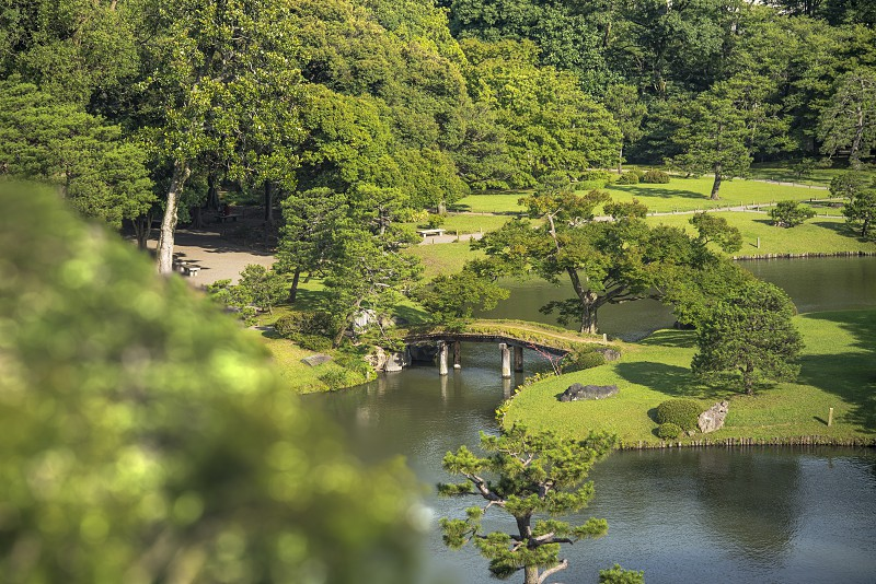 Big pine trees around a pond with a wooden bridge on a islet under the blue sky full of clouds in the garden of Rikugien in Tokyo in Japan. photo