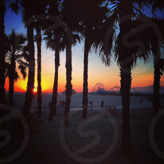 Sunset over looking the Santa Monica pier photo