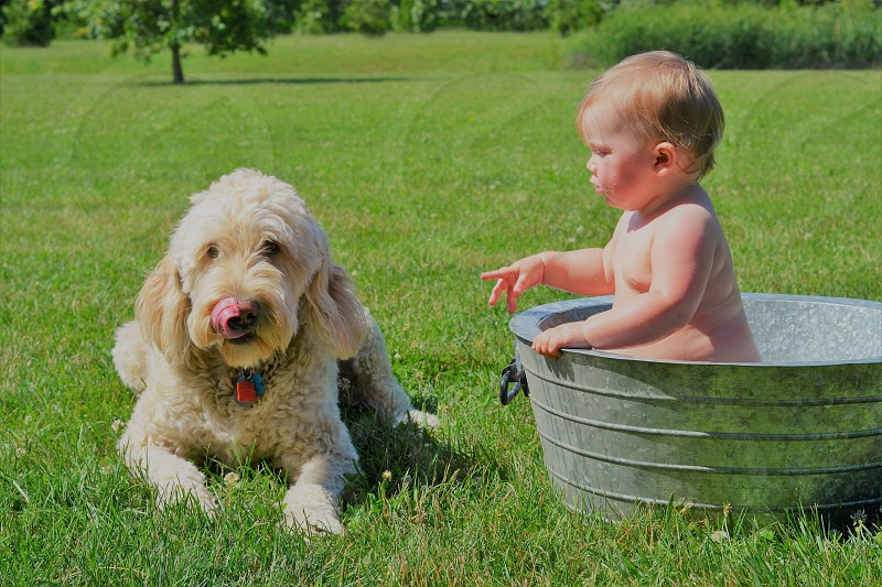 This cute baby taking a bath in a old-fashioned wash tub. Her faithful pup is standing by because they can't be apart for more than a few seconds. photo