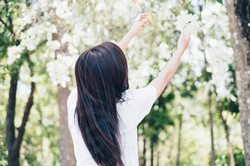 Rear view of young lady with long hair in white shirt raising her hands towards the flowers above. photo