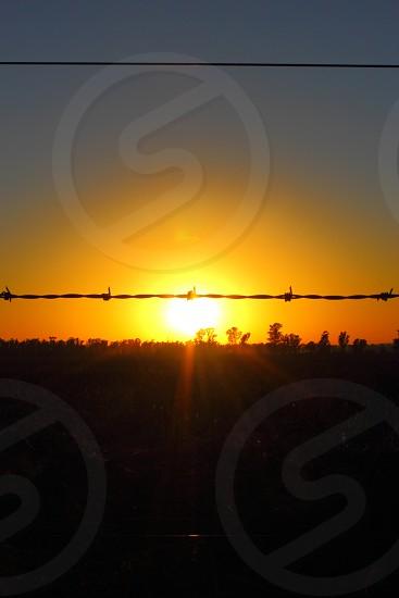 rural sunrise behind barbed wire  photo