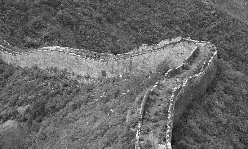A herd of goats next to the great wall of china beijing photo