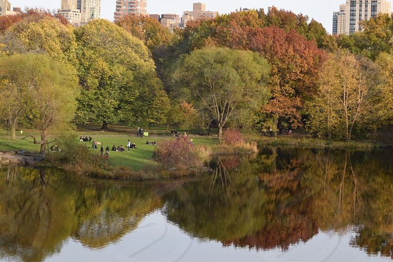 Fall reflections Central Park photo