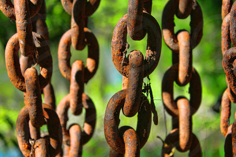 Five vertical lengths of old of rusty chains. photo