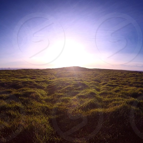 Sunset grass green bright horizon landscape outside sun happy photo