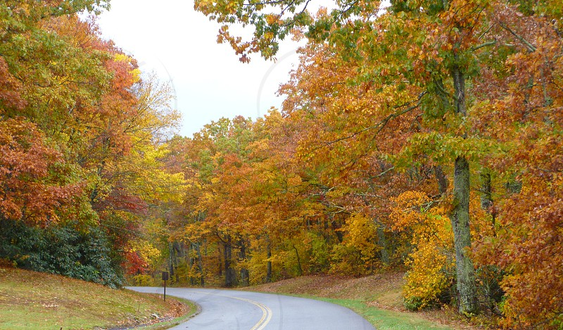 Blue Ridge Parkway Fall photo