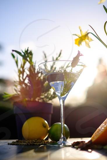 Botanical cocktailsummer drinkalcohollemonlimesummerrefreshment  photo