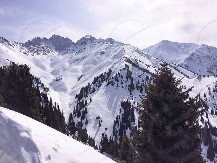 winter snow mountains snowdrift spruces forest sky nature.   Ak Bulak ski resort. Kazakhstan. photo